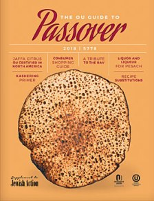 passover-guide18-cover