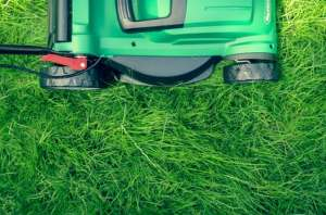 lawn mower 2