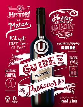 ou pesach guide logo